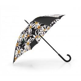 Parasol umbrella margarite