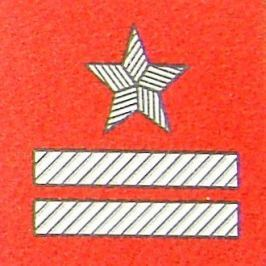 Stopień na beret WP (szkarłatny / t) - major